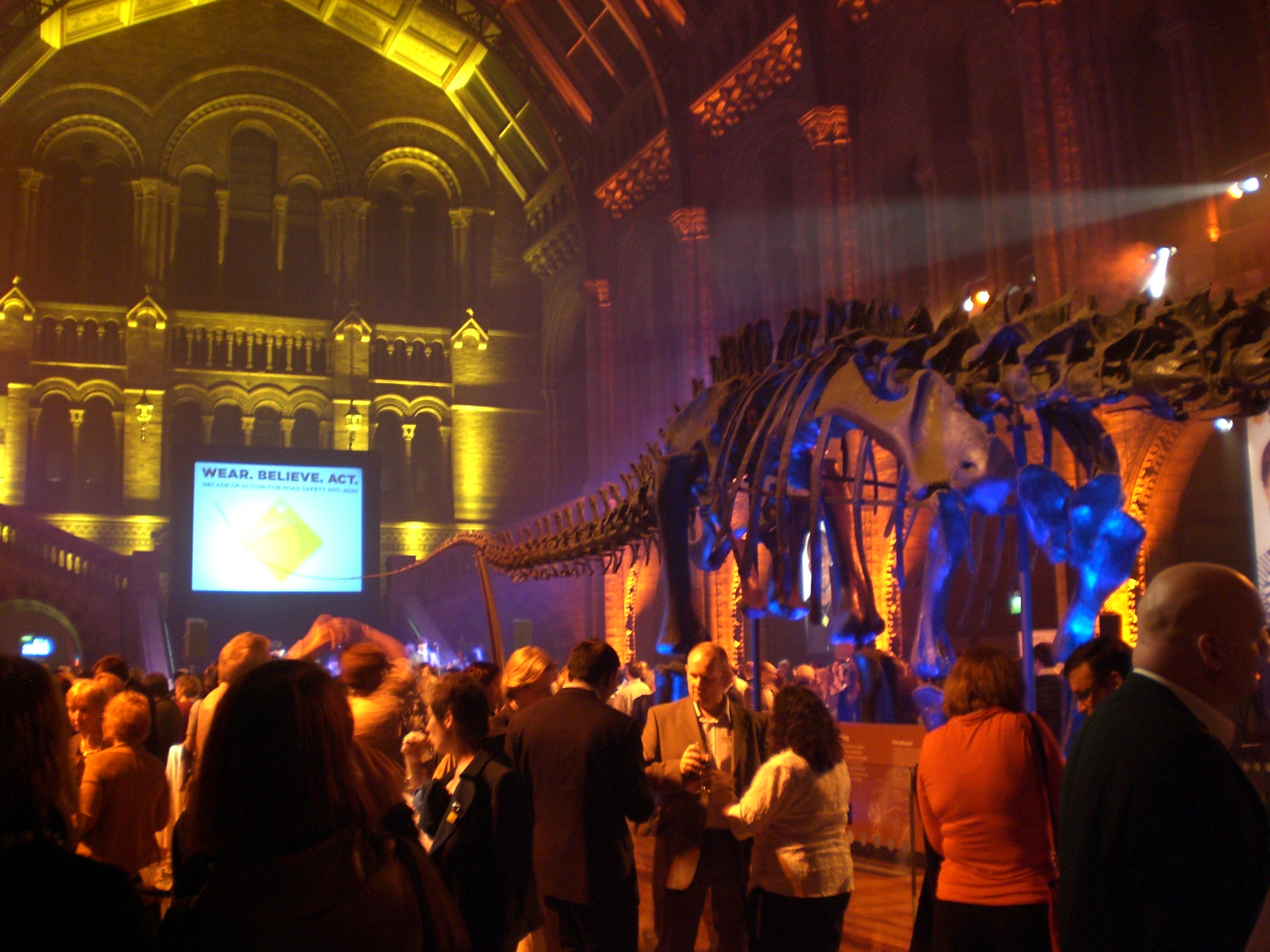 event lighting at the Natural History Museum, London